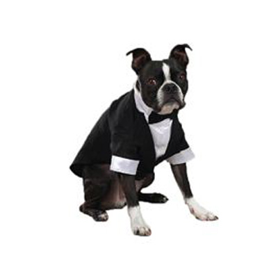 East Side Collection Groom Dog Tuxedo