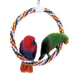 JW Pet Swing N Perch Bird Toy
