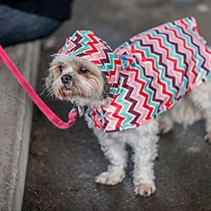 RC Pet Products Packable Sweet Sorbet Dog Rain Poncho