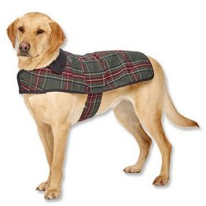 Pendleton Grey Stewart Classic Dog Coat
