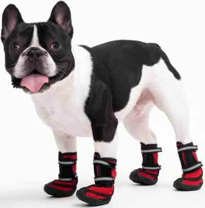 Ethical Pet Performance Waterproof Dog Boots