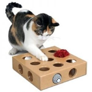 SmartCat Peek Play Box Cat Toy