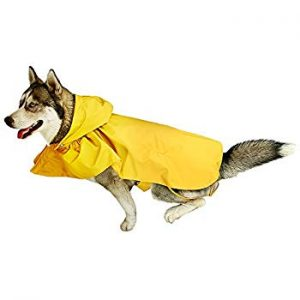 RC Pet Yellow Sunshine Packable Poncho