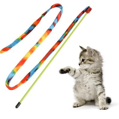 Cat Dancer Rainbow Charmer