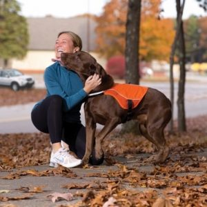 Kurgo Reflective LED Safety Dog Vest