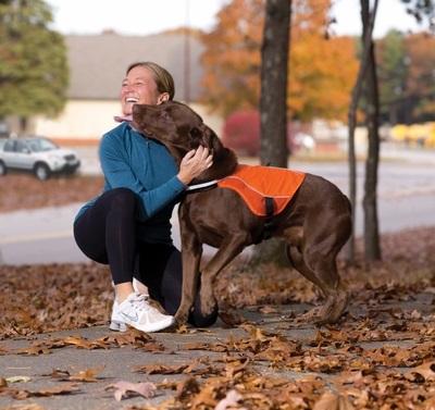 Kurgo Reflective LED Safety Dog Vest