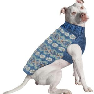Chilly Dog Fairisle Teal