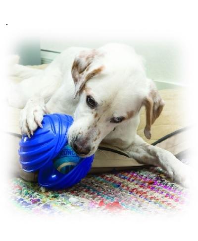 Kong Rambler Dog Toy