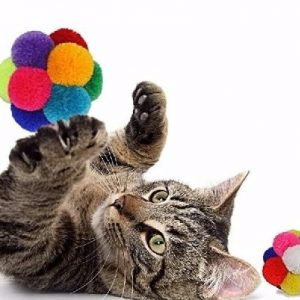 Goli Design Catomic Catnip Ball Cat Toy