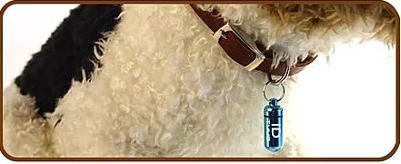 Goli Design Pet ID TUUB