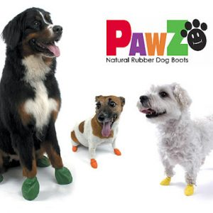 Pawz Dog