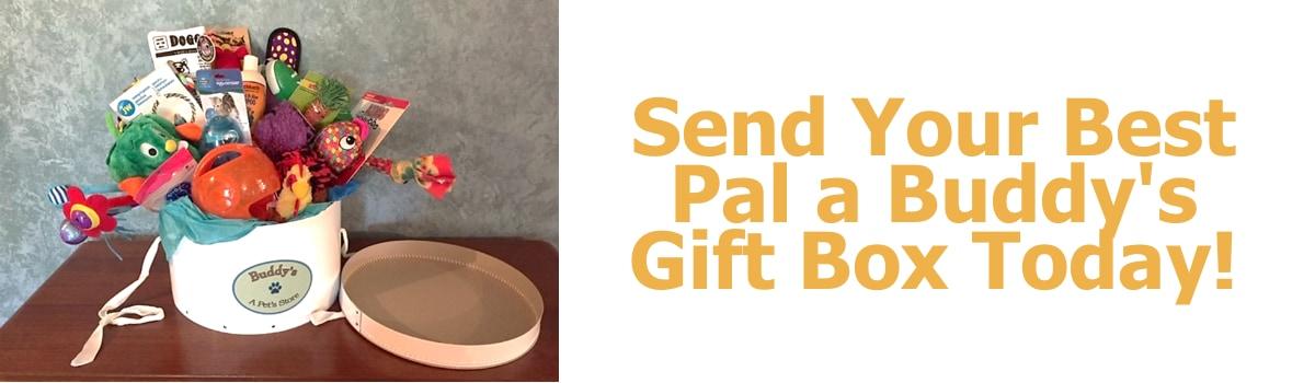 Buddys Gift Box banner