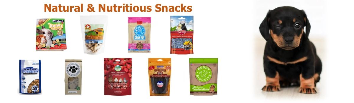 Natural Snacks 2020