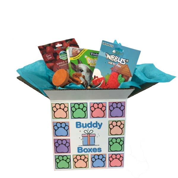 Small Pet Buddy Box